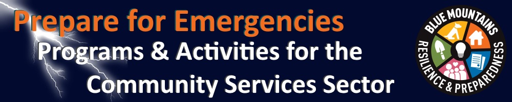 emergency activities services3